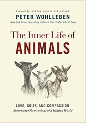 The Inner Life of Animals Amazon hyperlink