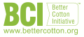 BCI logo.jng